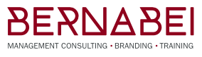 Bernabei Consulting